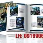 in catalogue tphcm